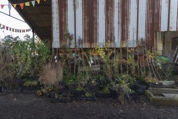 About Plants bvba (11)