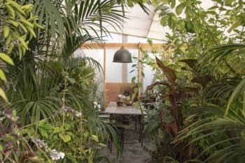 About Plants bvba (22)