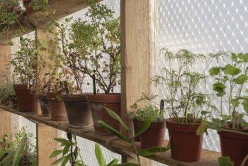 About Plants bvba (27)
