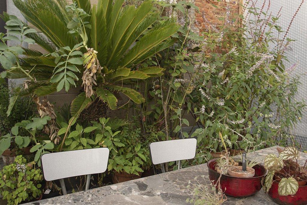 About Plants bvba (28)