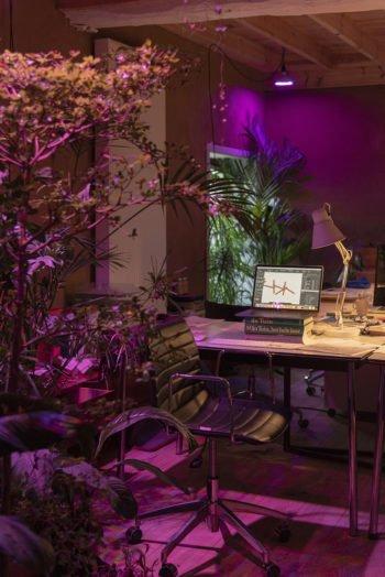 About Plants bvba (5)